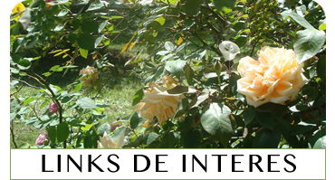 Links de interes